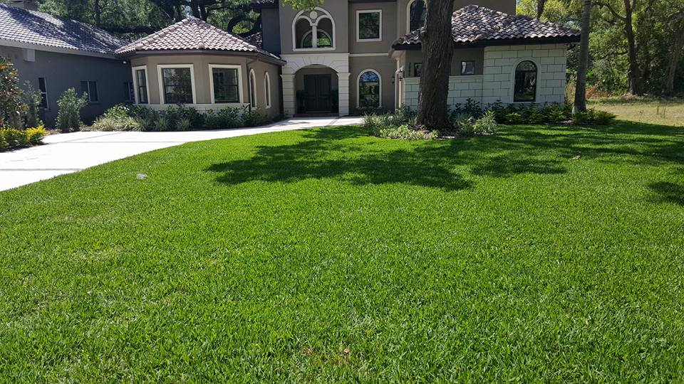 Lawn & Shrub Spraying & Fertilization